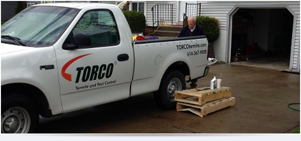 TORCO™ | Termite Control and Colony Elimination